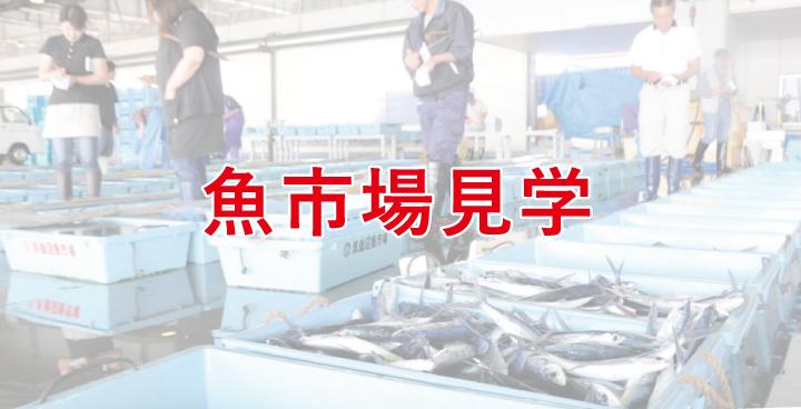 魚市場見学